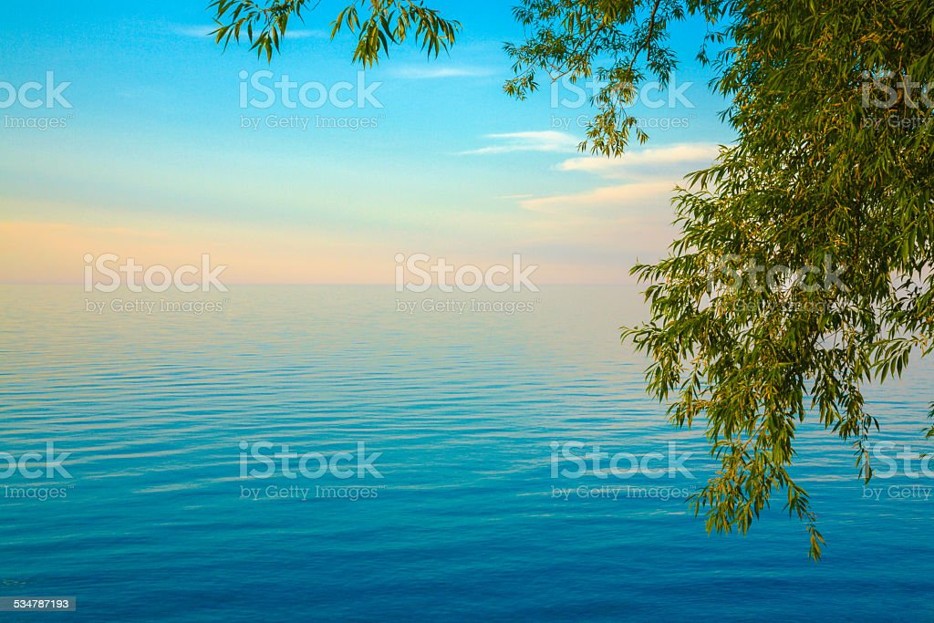 Lake Ontario ethereal sunset, tree on right, copyspace, blue water Lake Ontario ethereal sunset framed by tree on right, copyspace 2015 Stock Photo