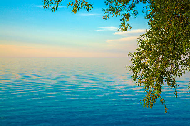 Lake Ontario ethereal sunset, tree on right, copyspace, blue water stock photo