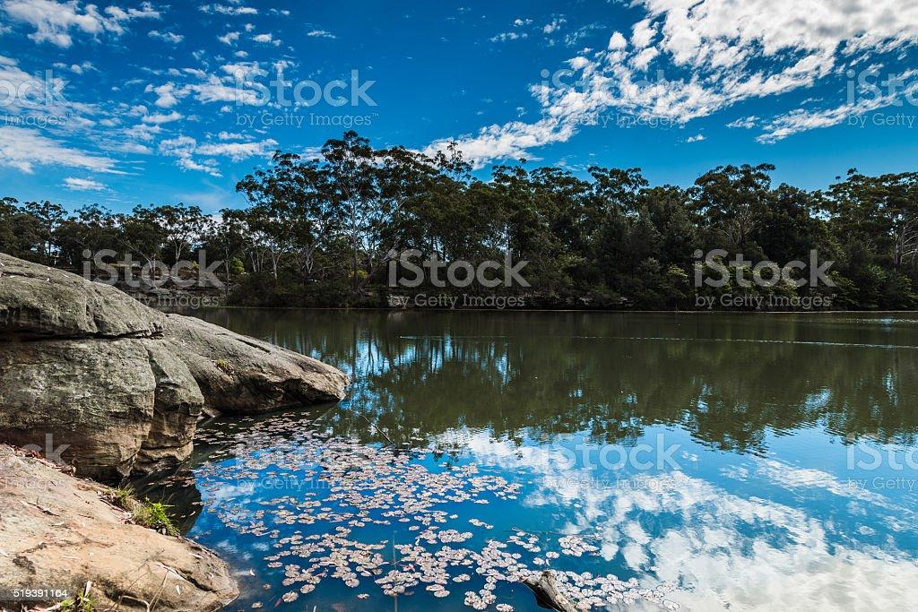 Lake Parramatta Reflections stock photo
