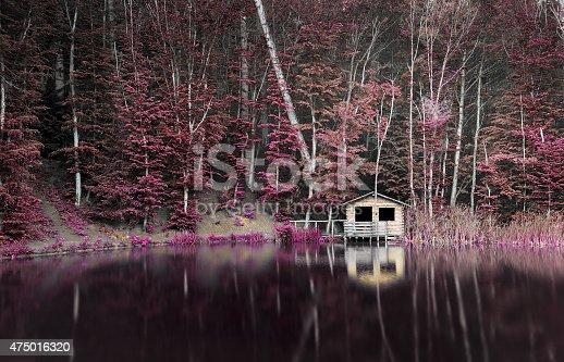istock Lake 475016320