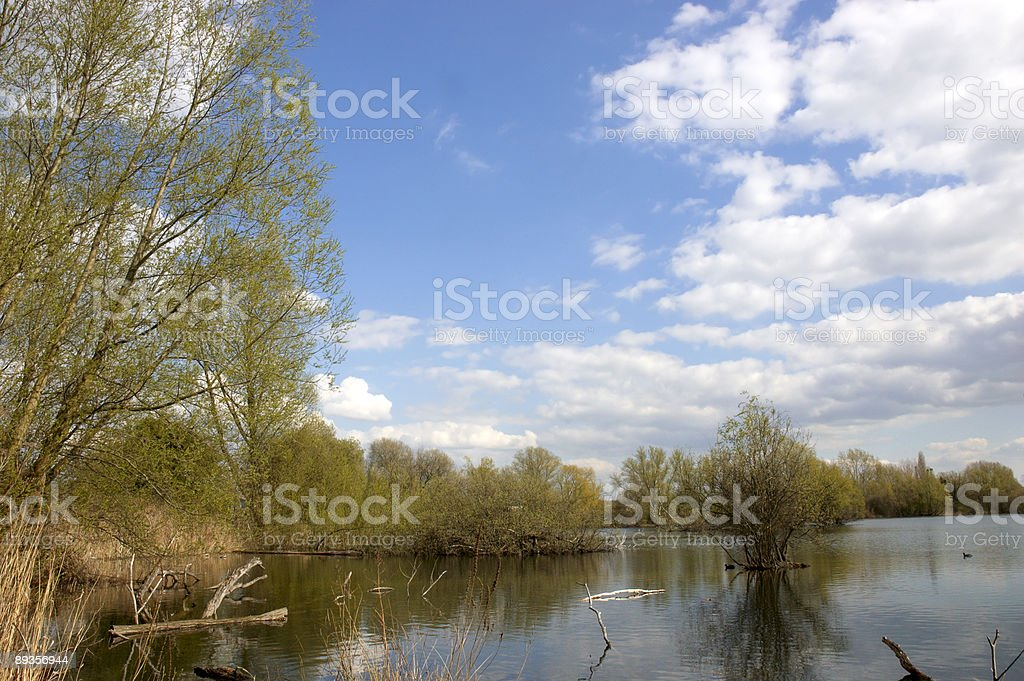 Lake royalty free stockfoto