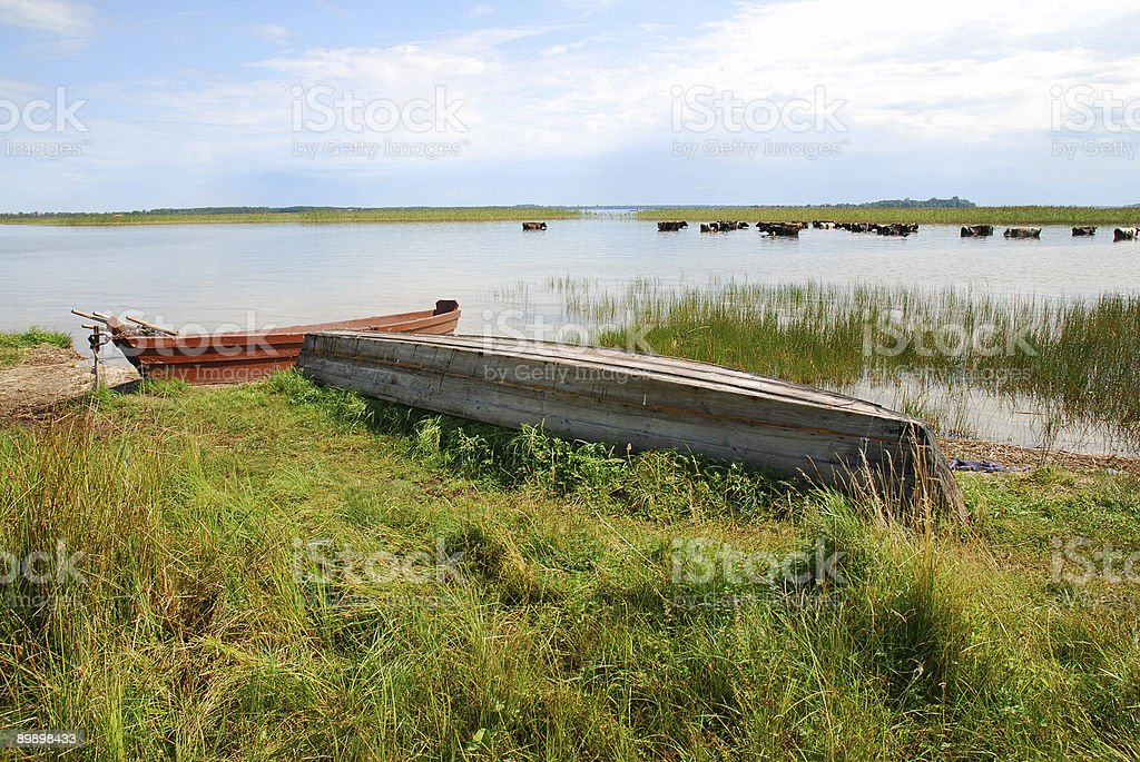 lake royalty free stockfoto