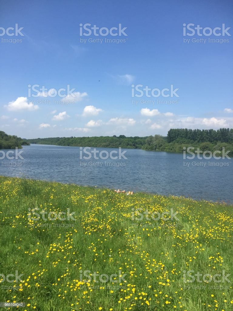 Lake zbiór zdjęć royalty-free