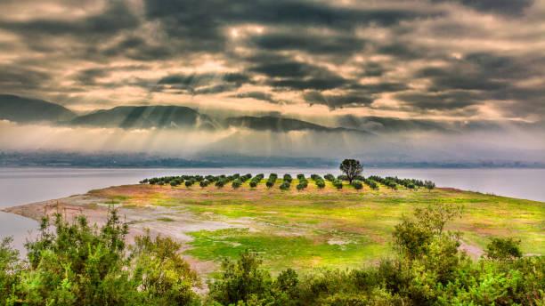 Lake Polyfytos - Kozani stock photo