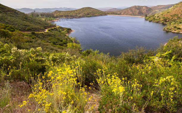 Lake Poway stock photo