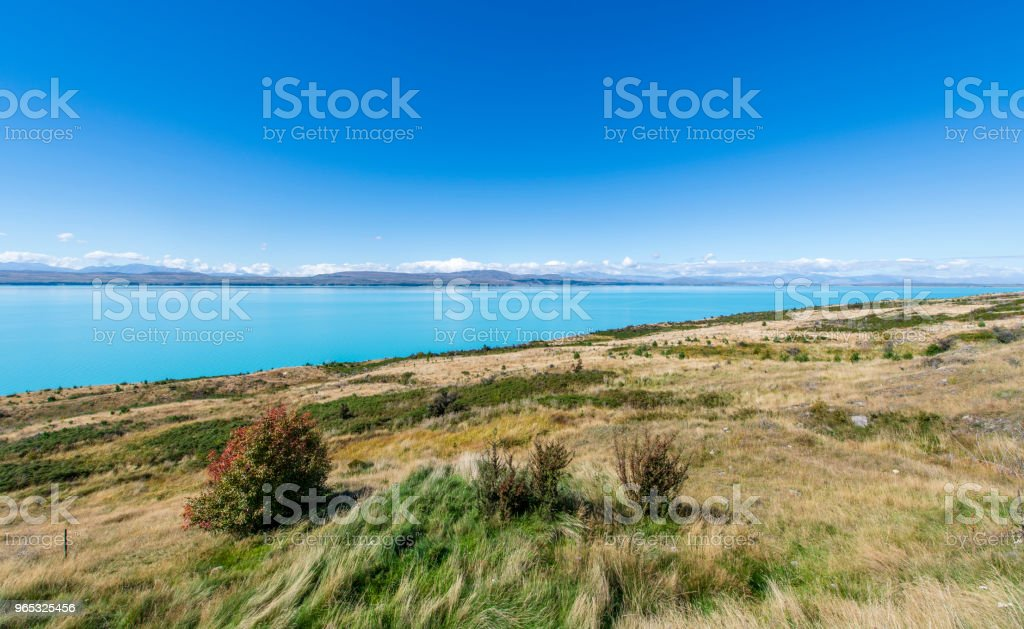 Lake Pukaki Mount Cook National Park royalty-free stock photo