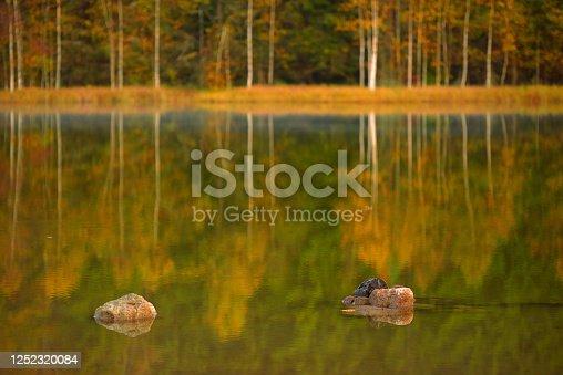istock Lake reflection and rocks 1252320084