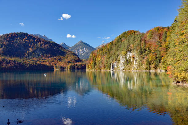 Lake reflection in German Alps stock photo