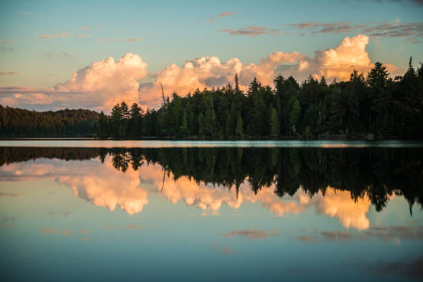 Lake Reflection Trees and clouds reflected on calm water on a pristine lake. reflection lake stock pictures, royalty-free photos & images