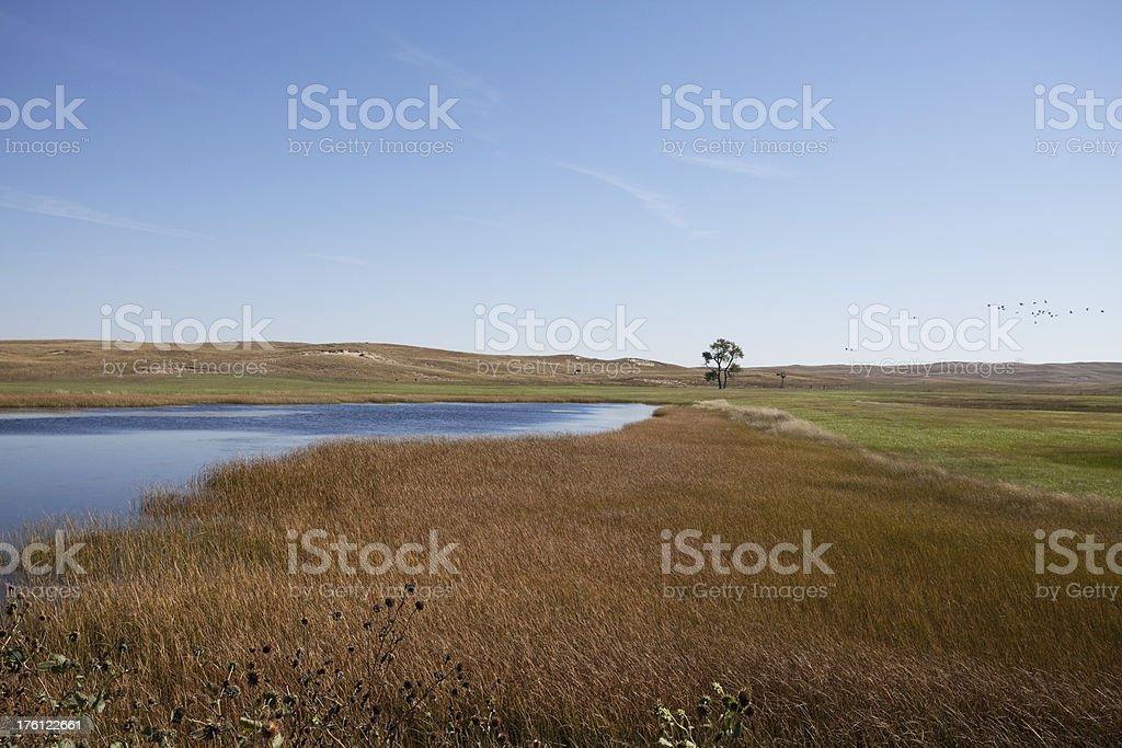 Lake Series royalty-free stock photo