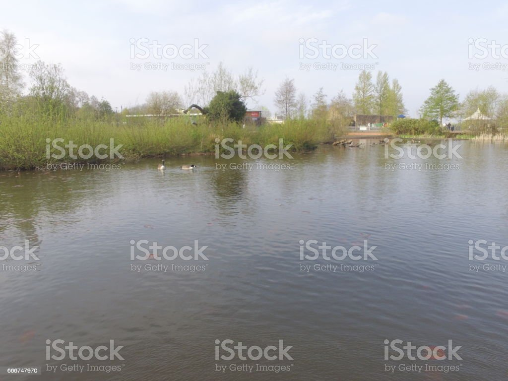 Lake side foto stock royalty-free