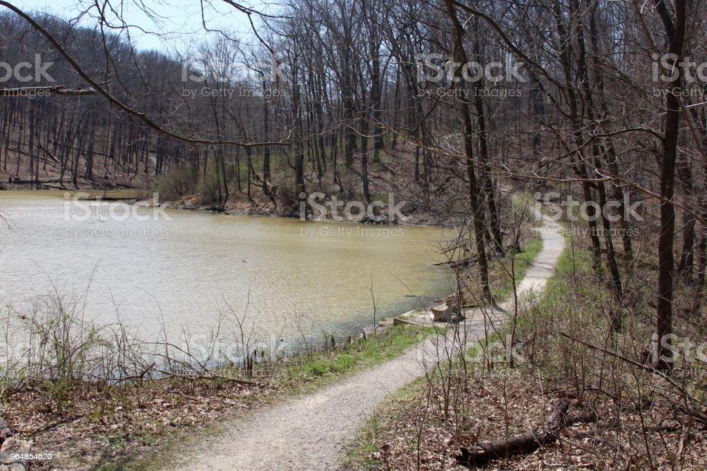 Lake Side Trail royalty-free stock photo