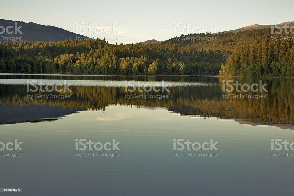 Lake silence. royalty-free stock photo