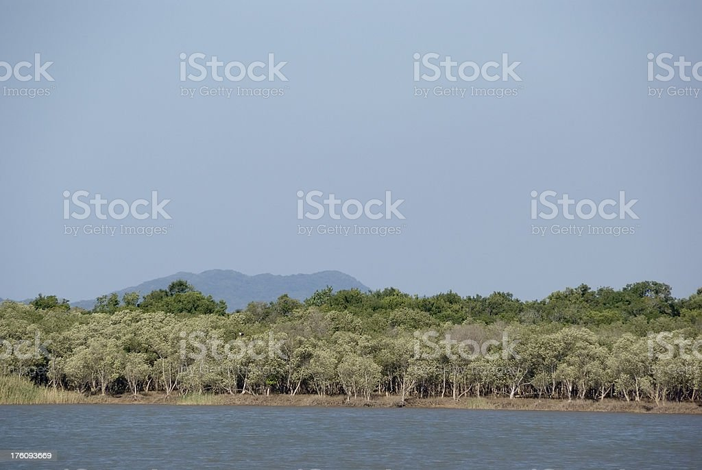 Lake St. Lucia, South Africa stock photo