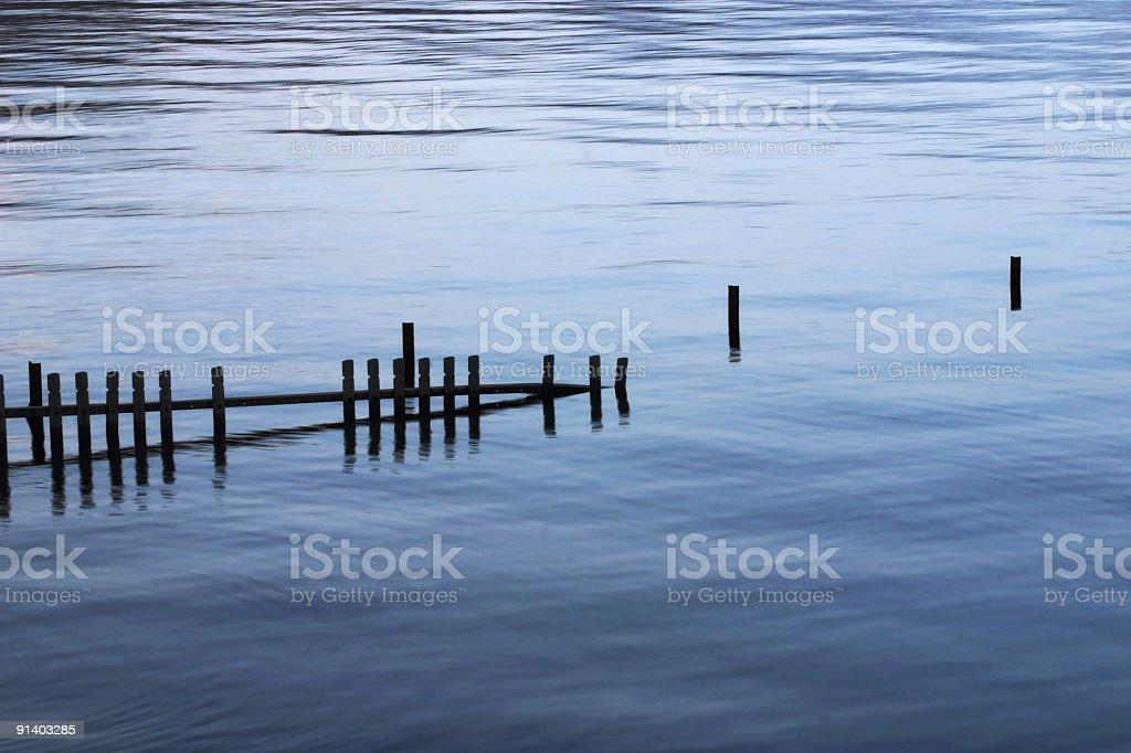 Lake Sticks1 royalty-free stock photo