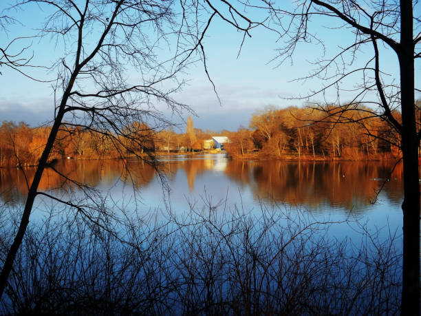 lake sunlight water autumn fall river shore scenic landscape stock photo
