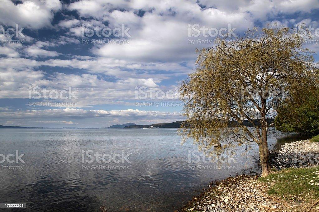 Lake Taupo royalty-free stock photo