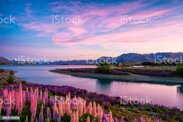 Lake Tekapo Bij Dageraad Nieuwzeeland Zuid Eiland Stockfoto en meer beelden van 2012