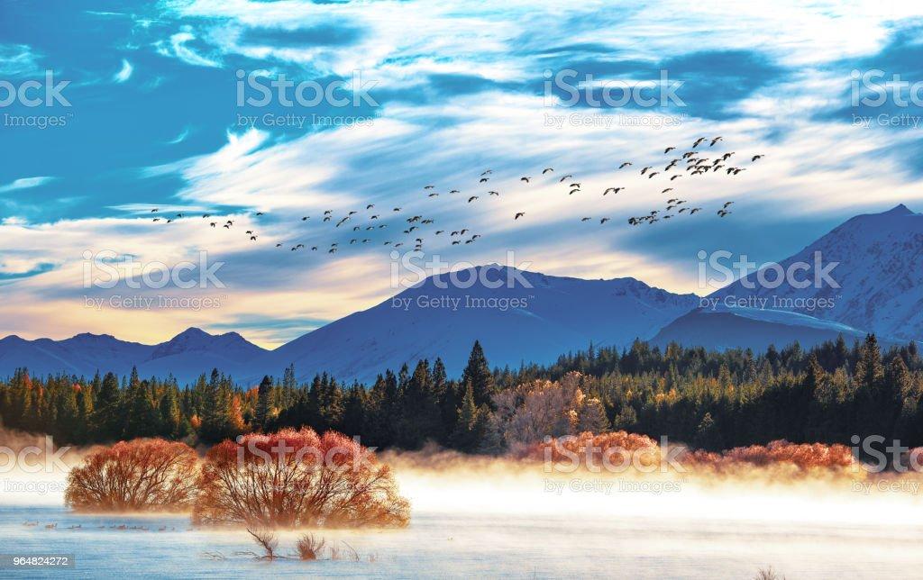 Lake Tekapo autumn view lookout from Mt. John royalty-free stock photo