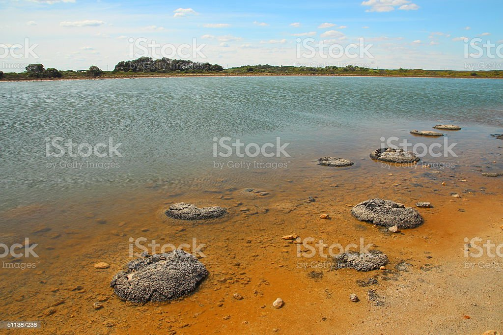 Lake Thetis and Stromatolites stock photo