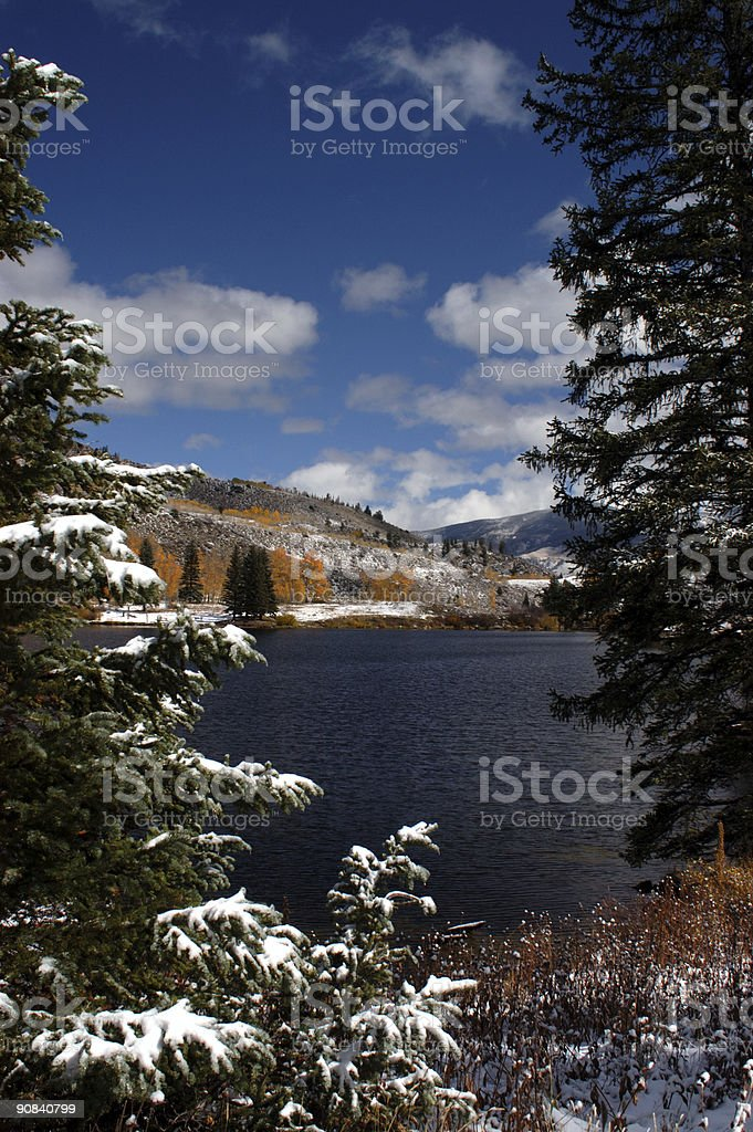 Lake through the pines royalty-free stock photo