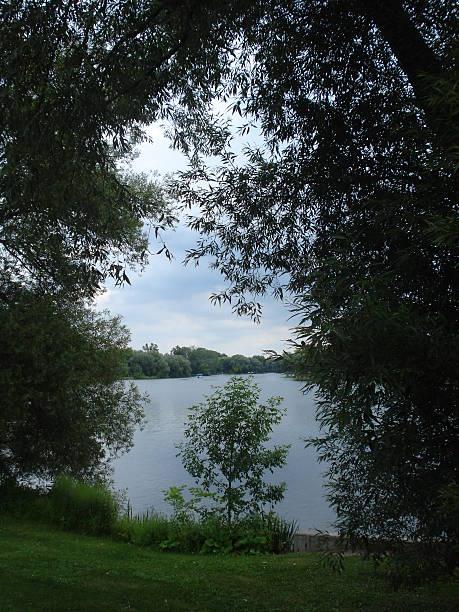 Lake through Trees stock photo