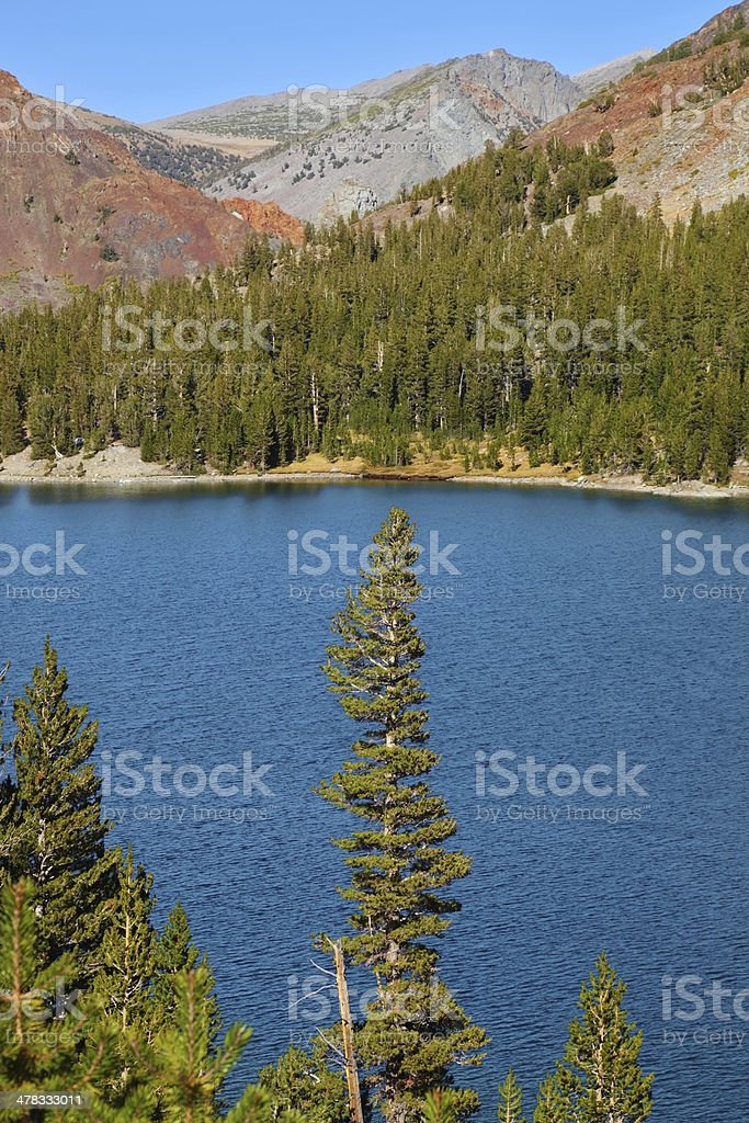 Lake Tioga, Yosemite park royalty-free stock photo
