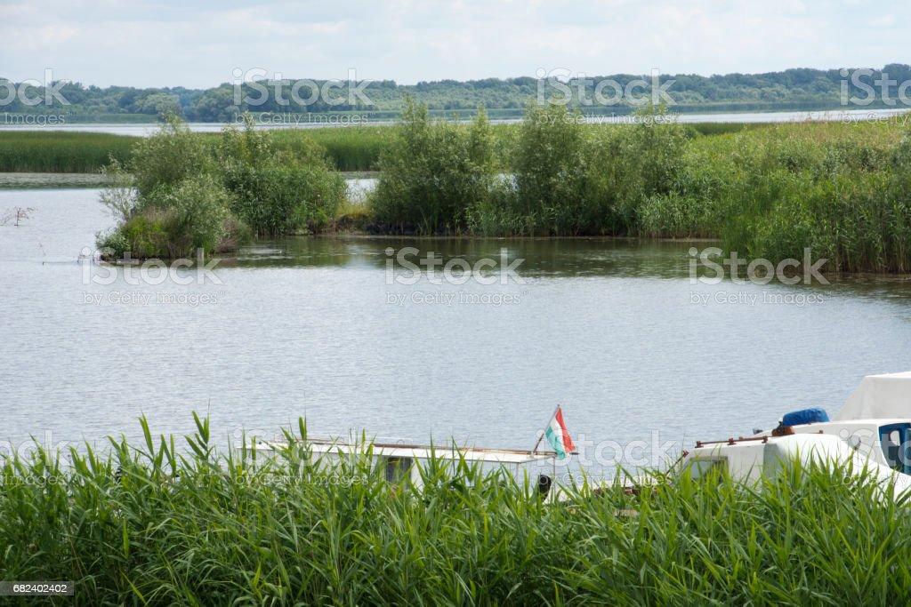 Lake Tisza, Hungary royalty-free stock photo