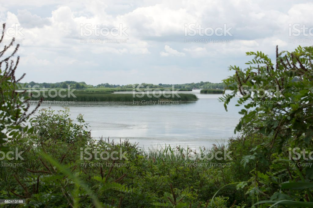 Lake Tisza, Hungary royalty-free stock photo