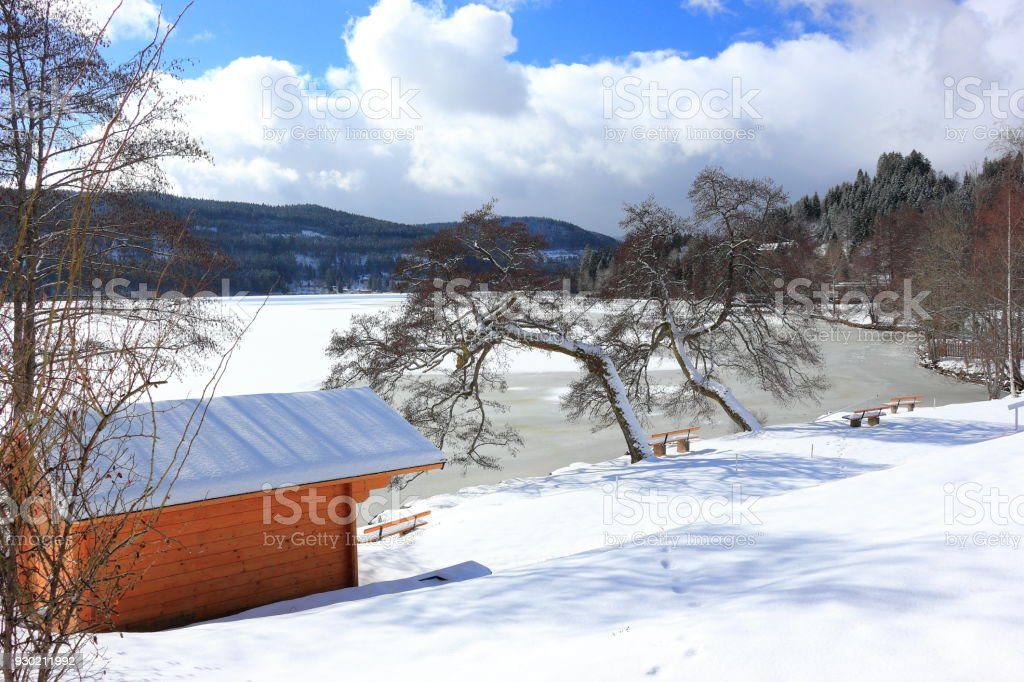 Lake Titisee In Winter Black Forest Germany Stock Photo Download Image Now Istock