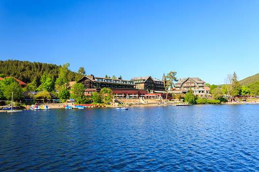 Lake Titisee Neustadt In The Black Forest Stock Photo Download Image Now Istock