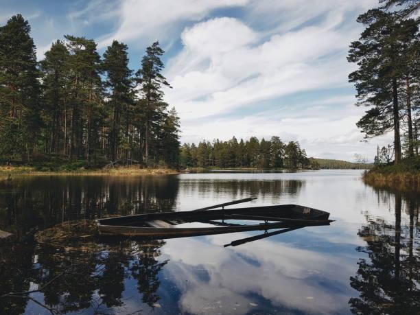 sjön Trehörningen i Tivedens Nationalpark en solig dag med blå himmel bildbanksfoto