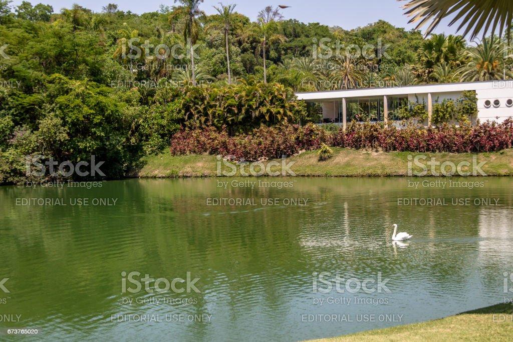 Vue sur le lac à Inhotim Public Musée d'Art contemporain - Brumadinho, Minas Gerais, Brésil photo libre de droits