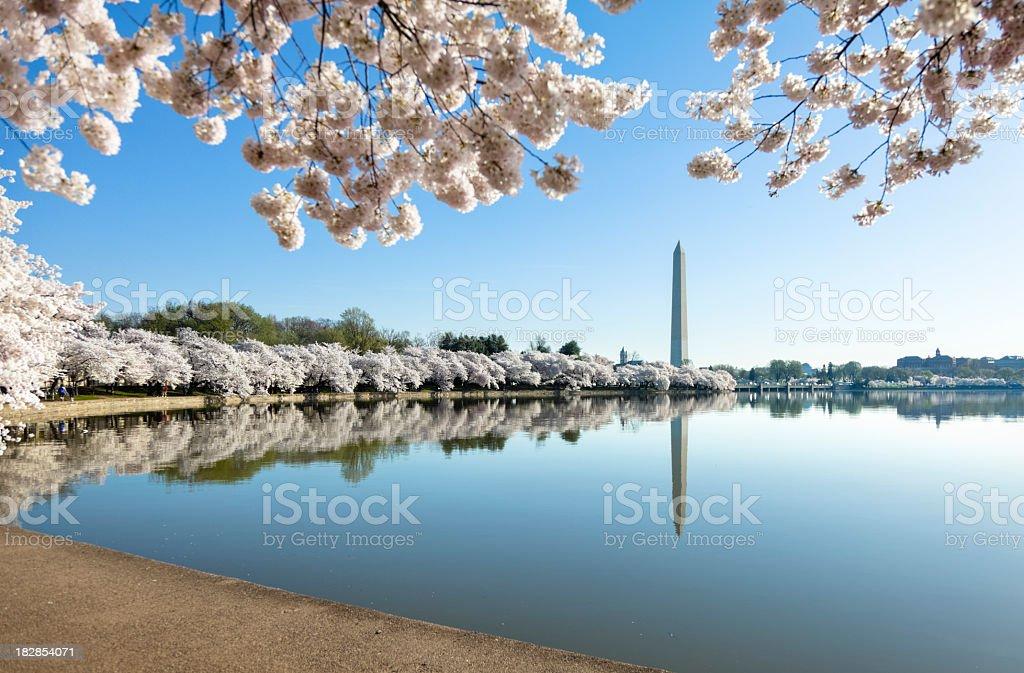Lake view of Washington monument stock photo