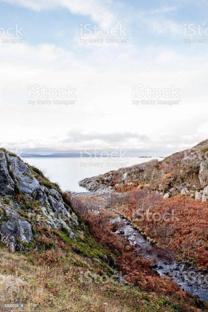 Uitzicht op het meer foto
