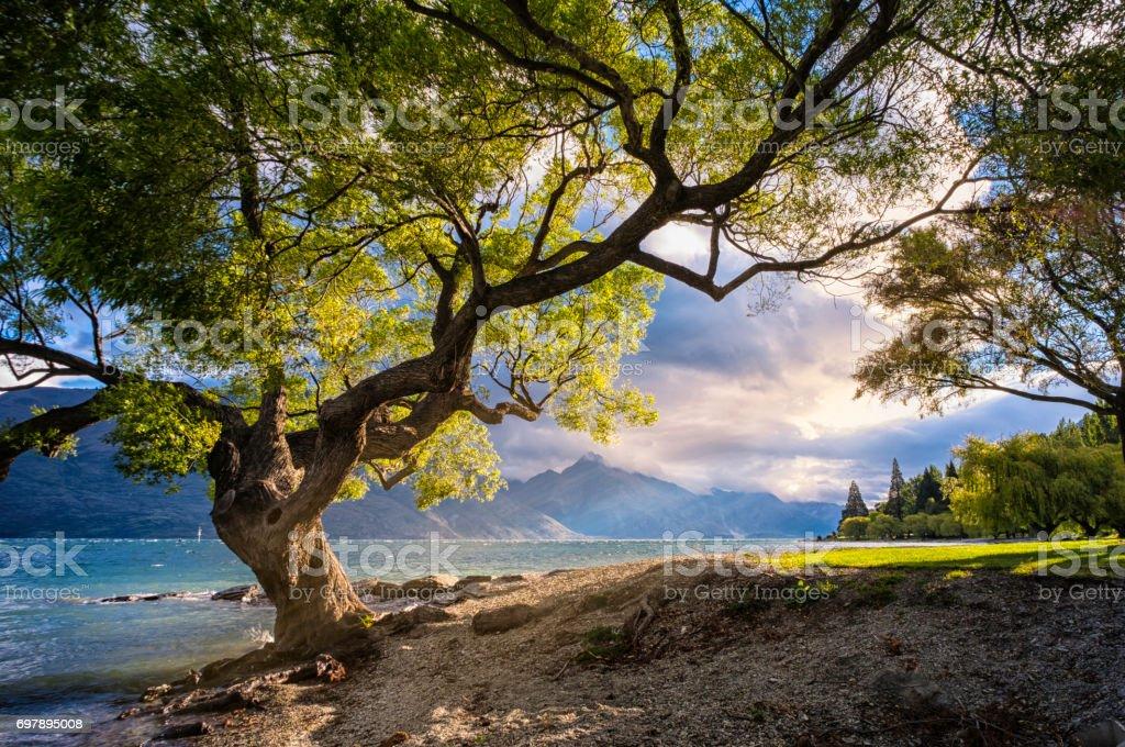 Lake Wakatipu On New Zealand's South Island stock photo