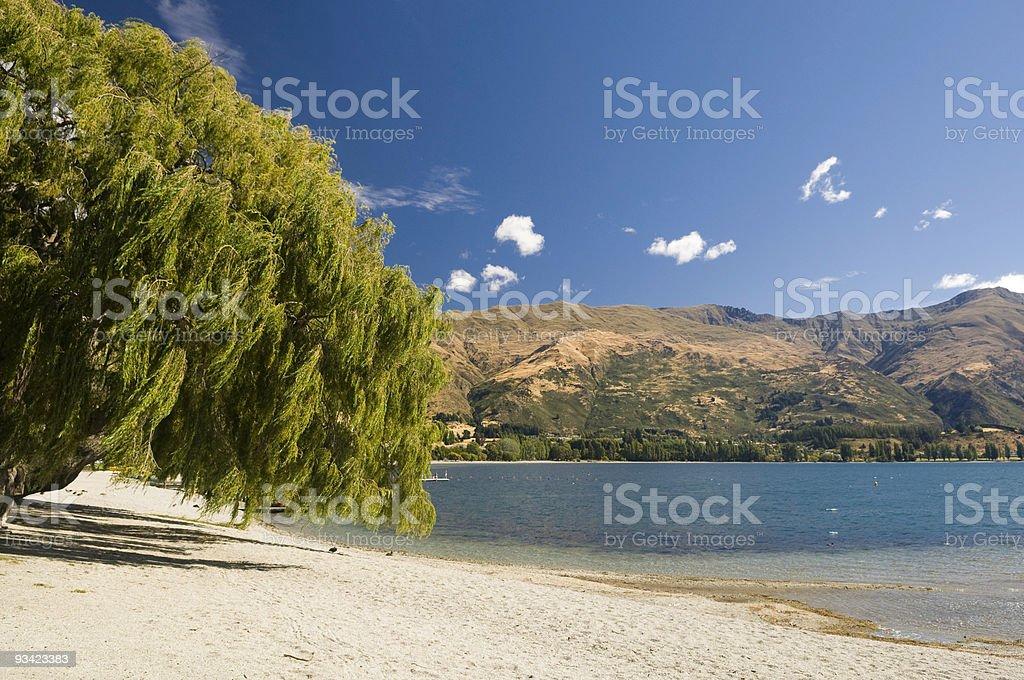 Lake Wanaka Shore royalty-free stock photo