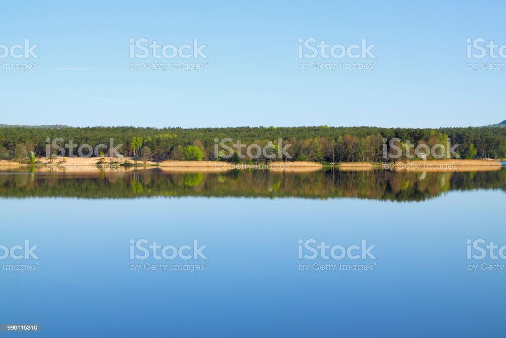 Lake with forest line mirrored into calm water surface stock photo