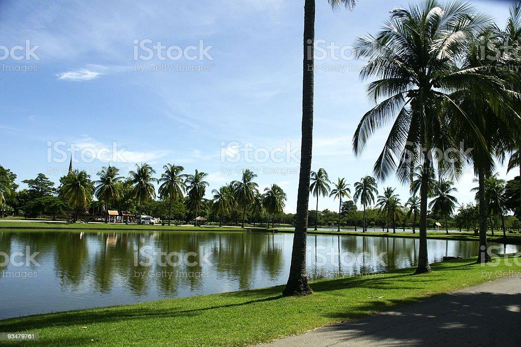 호수, 팜형 - 로열티 프리 0명 스톡 사진