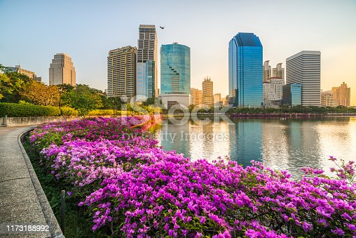 Lake with Purple Flowers in City Park under Skyscrapers at Sunrise. Benjakiti Park in Bangkok, Thailand