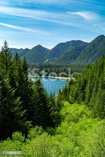 Lake Wynoochee viewed through the Olympic National Park in Washington state
