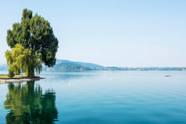 Lake Zug and lakeside view in Oberwil town, Canton of Zug, Switzerland Lake Zug and Lakeside view in Oberwil town, Canton of Zug, Switzerland. zug stock pictures, royalty-free photos & images
