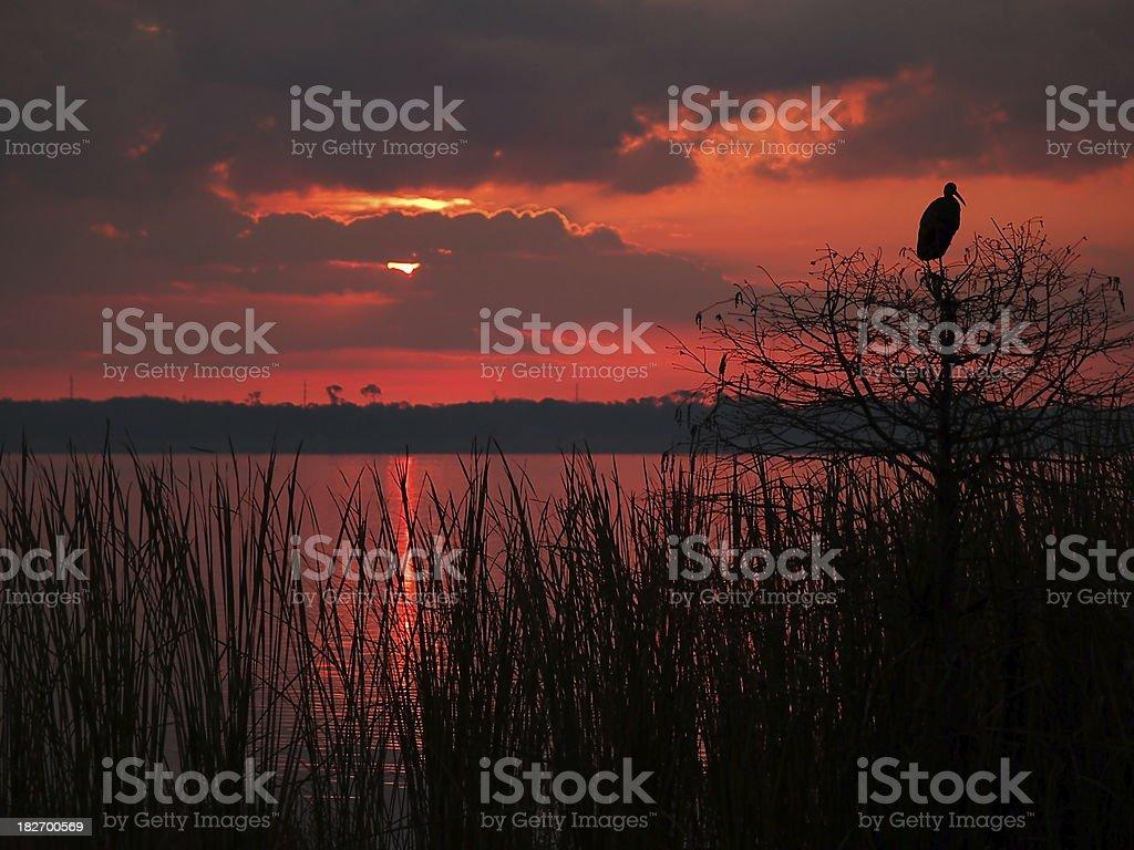 Lakeland dawn stock photo