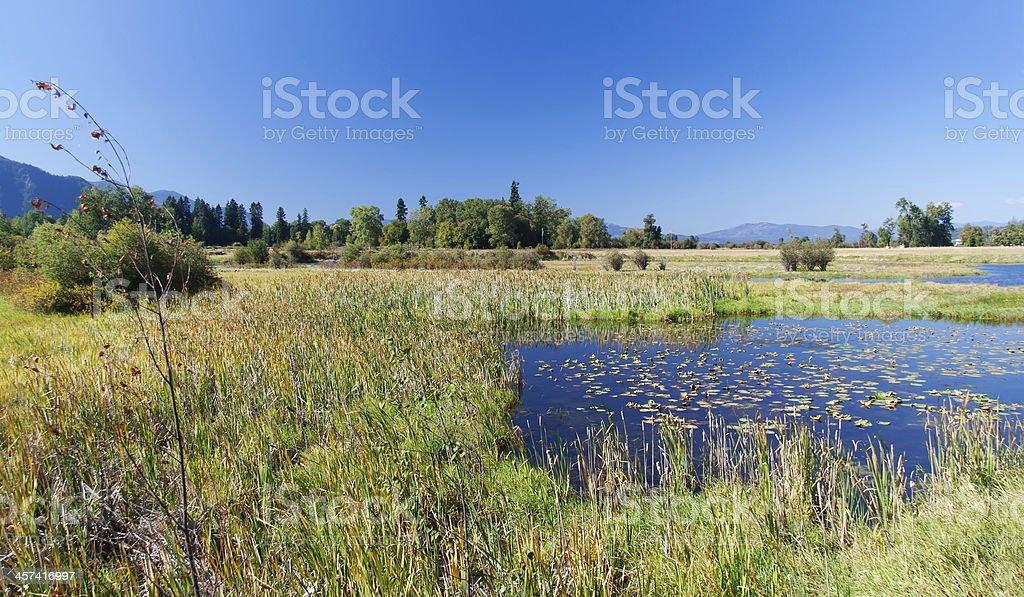 Lakeland in Montana stock photo