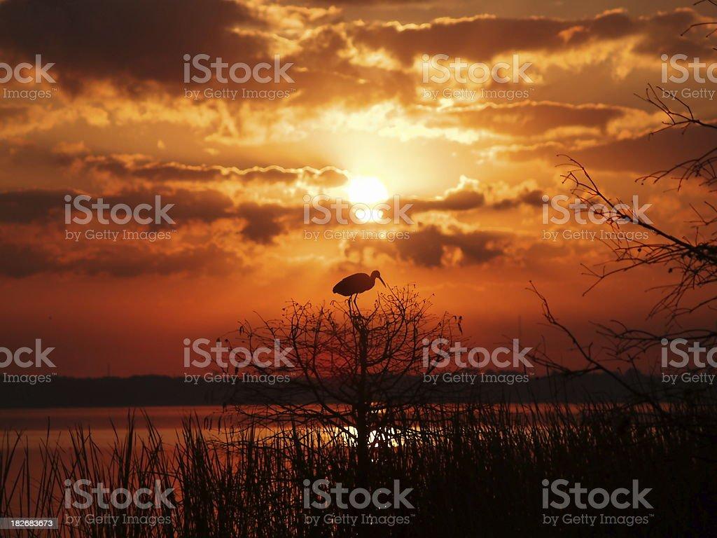 Lakeland sunrise stock photo