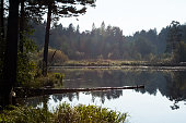 Lakes in the autumn forest. Forest autumn landscape, beautiful nature.