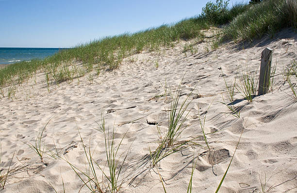 Lakeshore Dunes stock photo