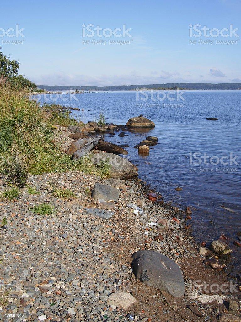 lakeshore royalty-free stock photo