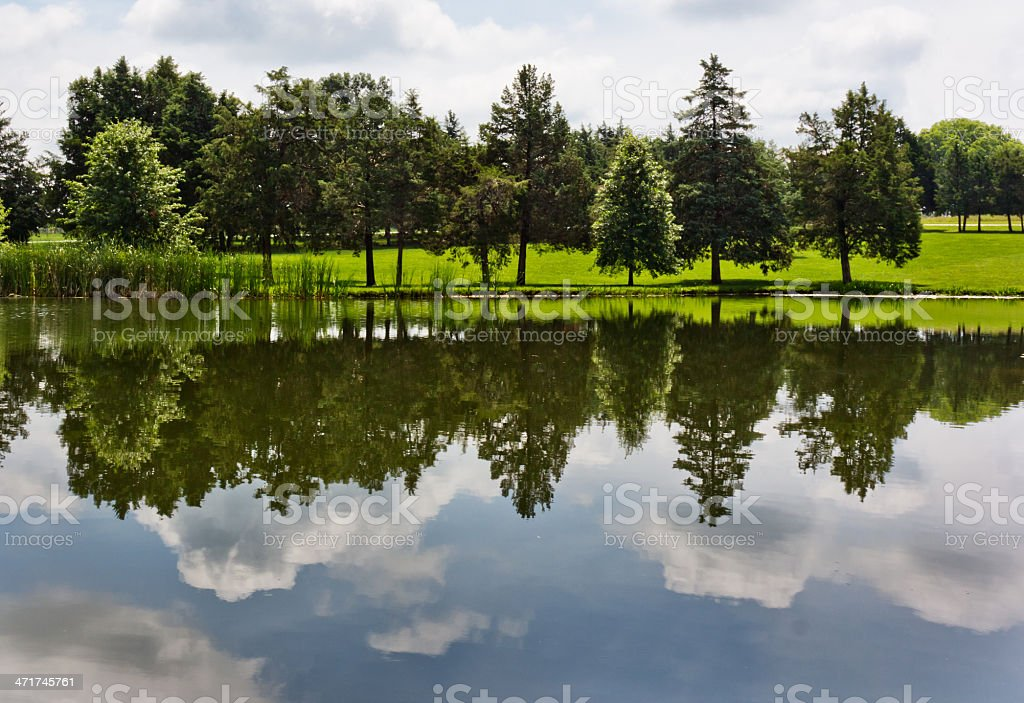 Lakeshore Reflected in the Lake stock photo