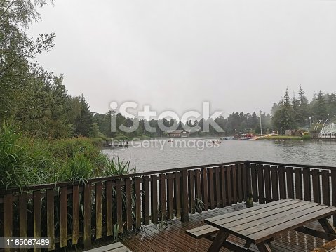 Greenery beside the lake with grey skies above